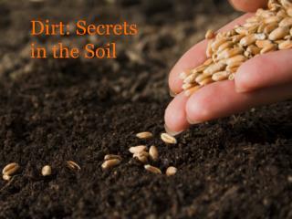 Dirt: Secrets in the Soil