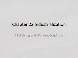Chapter 22 Industrialization