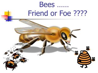 Bees       Friend or Foe