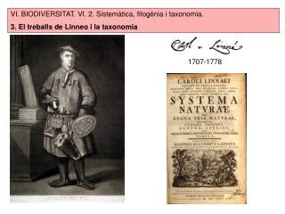 VI. BIODIVERSITAT. VI. 2. Sistemàtica, filogènia i taxonomia.
