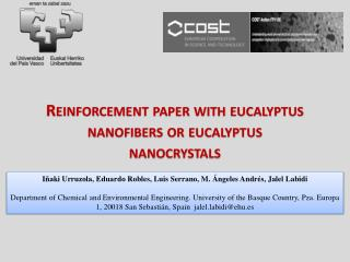 Reinforcement paper with eucalyptus  nanofibers  or eucalyptus  nanocrystals