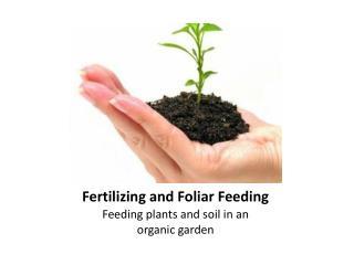 Fertilizing and Foliar Feeding