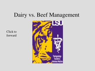 Dairy vs. Beef Management