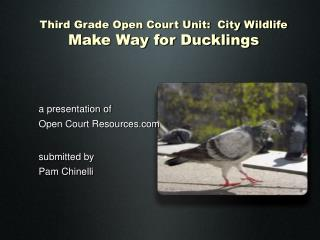 Third Grade Open Court Unit: City Wildlife Make Way for Ducklings