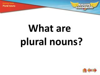 What are plural nouns?