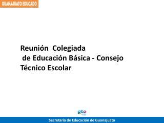 Reunión  Colegiada  de Educación Básica - Consejo Técnico Escolar