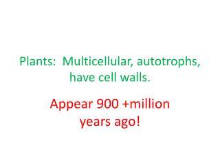 Plants:   Multicellular , autotrophs, have cell walls.