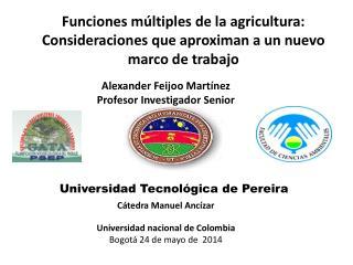 Alexander Feijoo  Martínez Profesor Investigador Senior