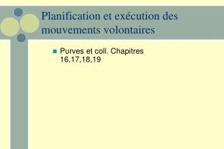Planification et exécution des mouvements volontaires