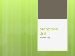 Mangrove Unit