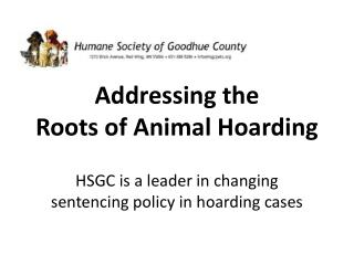 Addressing the  Roots of Animal Hoarding