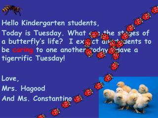 Hello Kindergarten students,