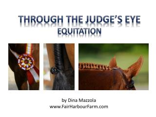 Through the Judge's Eye Equitation