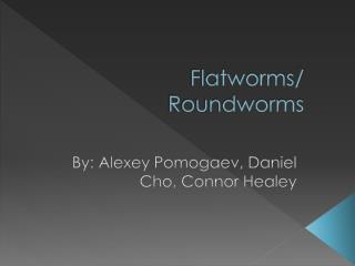 Flatworms/ Roundworms
