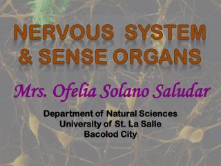 NERVOUS   SYSTEM & SENSE ORGANS
