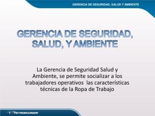 GERENCIA DE SEGURIDAD, SALUD, Y  AMBIENTE
