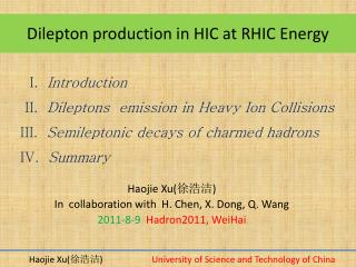 Dilepton  production in HIC at RHIC Energy
