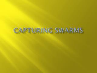 Capturing Swarms