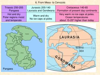 6 . From Meso- to Cenozoic