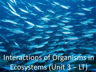 Interactions of Organisms  in  Ecosystems (Unit 3 – LT)