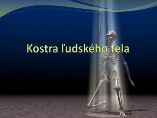 Kostra ľudského tela