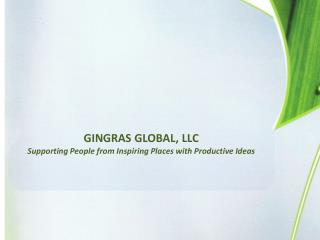 GINGRAS GLOBAL, LLC    Supporting People from Inspiring Places with Productive Ideas