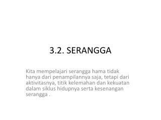 3.2. SERANGGA