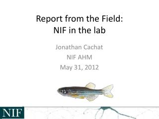 Report from the Field: NIF in the lab