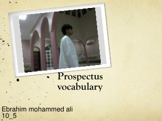 Prospectus  vocabulary