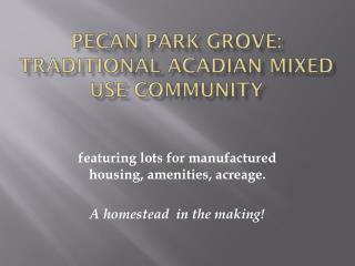 Pecan Park Grove: Traditional Acadian Mixed Use Community