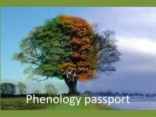 Phenology passport