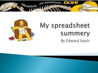 My spreadsheet  summery