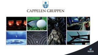 Eiet av familien Cappelen. Etablert i 1729 Virksomheter innen: • Jernstøping : primært gategods