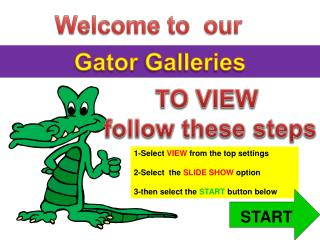Gator Galleries