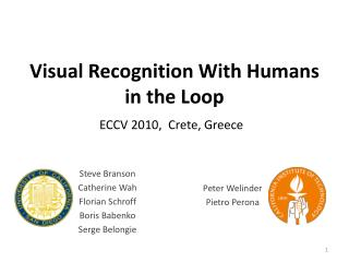 Visual Recognition With Humans in the Loop