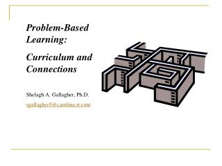 Problem-Based Learning:  Curriculum and Connections Shelagh  A. Gallagher, Ph.D.