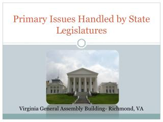 Primary Issues Handled  by State  Legislatures