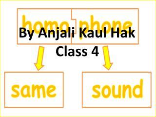 By  Anjali Kaul Hak Class 4