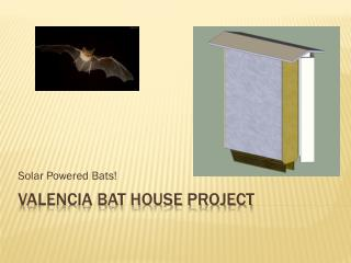 Valencia Bat House Project