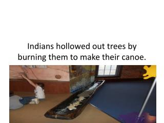 Indians hollowed out trees by burning them to make their canoe.