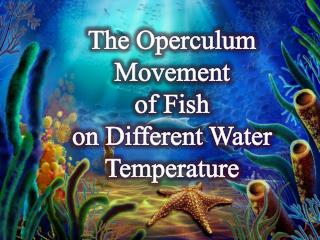 The Operculum Movement  of Fish  on Different Water Temperature