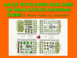 BAH E BITKILERININ BESLENME VE INSAN SAGLIGI A ISINDAN  NEMI 2. Mineral madde, su, antioksidan