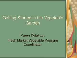 Getting Started in the Vegetable Garden