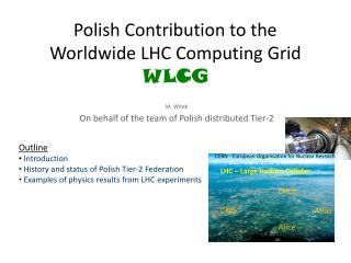 Polish Contribution to the Worldwide LHC Computing Grid WLCG