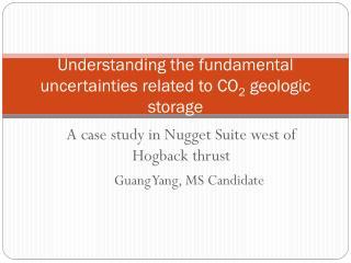 Understanding the fundamental  uncertainties  related to  CO 2 geologic storage
