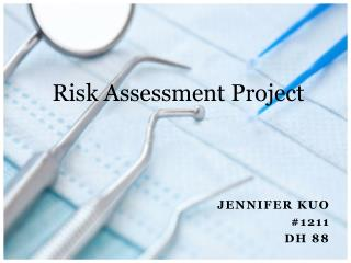 Risk Assessment Project