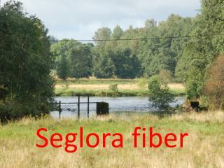 Seglora fiber