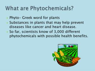 Phyto - Greek word for plants