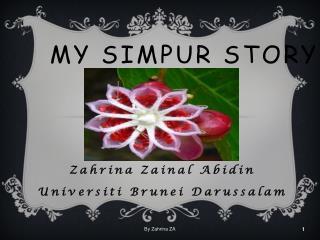 MY  SIMPUR  STORY