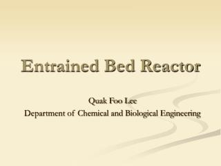 Entrained Bed Reactor